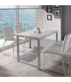 Fixed table glass smoke living room or dining room