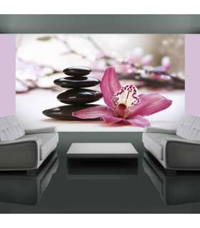 Fotomural - Relaxation and Wellness - Imagen 1