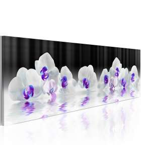 Cuadro -  Water Orchids - Imagen 1