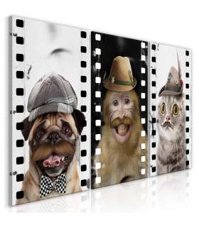 Cuadro - Funny Pets (Collection) - Imagen 1