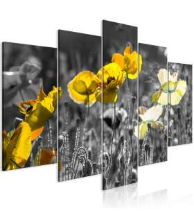 Cuadro - Yellow Poppies (5 Parts) Wide - Imagen 1