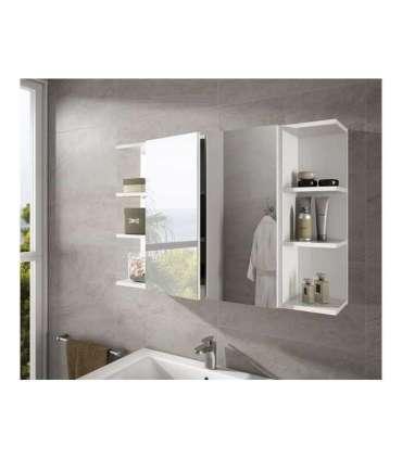 Conjunto muebles camerino 2 puertas espejo y 2 rinconerosFrs